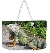 Iguania Sunbathing Weekender Tote Bag