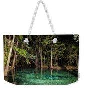 Illuminated Spring Weekender Tote Bag