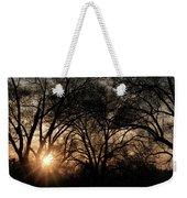 Illuminating Through Trees  Weekender Tote Bag