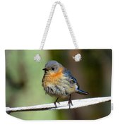 Illusive Female Bluebird Weekender Tote Bag