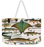Illustration Of Ocean Fish Weekender Tote Bag