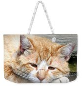Img_0001 Cat Weekender Tote Bag