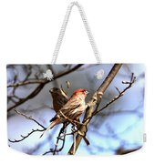 Img_0001 - House Finch Weekender Tote Bag