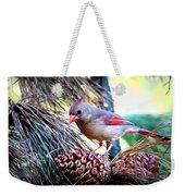 Img_0311 - Northern Cardinal Weekender Tote Bag
