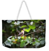 Img_0534-001 - Mourning Dove Weekender Tote Bag