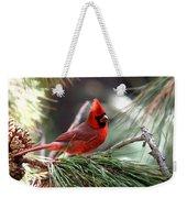 Img_0565-004 - Northern Cardinal Weekender Tote Bag