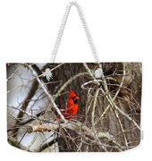 Img_0806 - Northern Cardinal Weekender Tote Bag