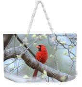 Img_0999-001 - Northern Cardinal Weekender Tote Bag