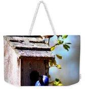 Img_1154 - Eastern Bluebird Weekender Tote Bag