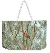 Img_1273-003 - Northern Cardinal Weekender Tote Bag
