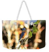 Img_145-005 - Eastern Bluebird Weekender Tote Bag