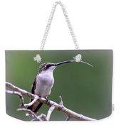 Img_1768-001 - Ruby-throated Hummingbird Weekender Tote Bag