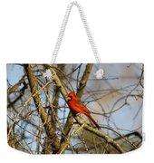 Img_2757-001 - Northern Cardinal Weekender Tote Bag