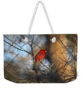 Img_2866-001 -  Northern Cardinal Weekender Tote Bag