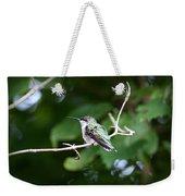 Img_3309 - Ruby-throated Hummingbird Weekender Tote Bag