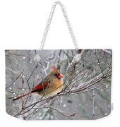 Img_6770 - Northern Cardinal Weekender Tote Bag