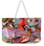 Img_ 8621 - Northern Cardinal Weekender Tote Bag