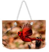 Img_8892 - Northern Cardinal Weekender Tote Bag