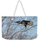 Immature Eagle Wheels Down Weekender Tote Bag