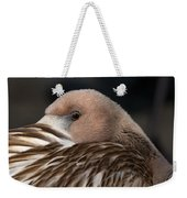 Immature Flamingo Weekender Tote Bag