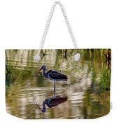 Immature White Ibis At Sunrise Weekender Tote Bag