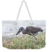 Immature Yellow Crown Night Heron Weekender Tote Bag