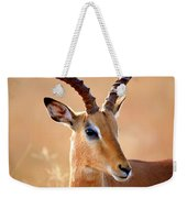 Impala Male Portrait Weekender Tote Bag