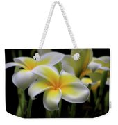 In Love With Butterflies Plumeria Flower Cecil B Day Butterfly Center Art Weekender Tote Bag