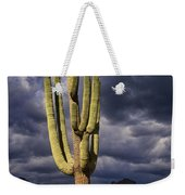 In Search Of That Perfect Saguaro  Weekender Tote Bag