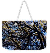 In Sunlight And In Shadow Weekender Tote Bag