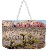 In The Desert Weekender Tote Bag