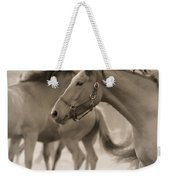 In The Dust Weekender Tote Bag
