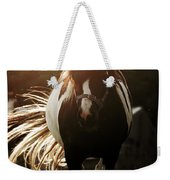 In The Last Rays Of Setting Sun Weekender Tote Bag