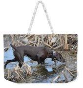 In The Marsh Weekender Tote Bag