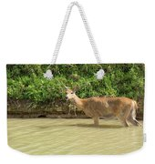 In The River Weekender Tote Bag
