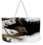 In The Shelder. Eurasian Blackbird Weekender Tote Bag