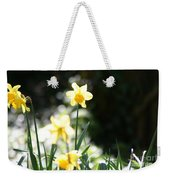 In The Springtime Sunshine Weekender Tote Bag