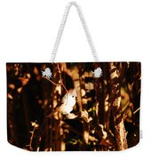 In The Sunlight Weekender Tote Bag
