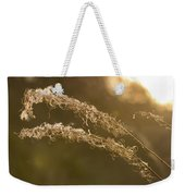 In The Sunset Light Weekender Tote Bag