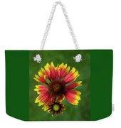 Indian Blanket Flower - Gaillardia Weekender Tote Bag