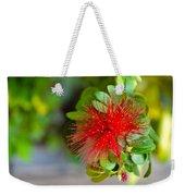 Indian Bottlebrush Flower Weekender Tote Bag