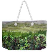 Hour Pond Mountain, Indian Lake Overlook Panorama 2 Weekender Tote Bag
