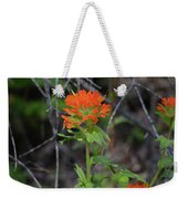 Indian Paint Brush 2 Weekender Tote Bag