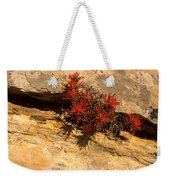 Indian Paint Brush Weekender Tote Bag