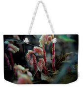 Indian Pipe 5 Weekender Tote Bag