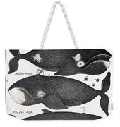 Indigenous Fish, Greenland, 18th Century Weekender Tote Bag