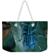 Indigo Blue Weevil Weekender Tote Bag