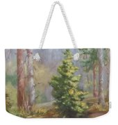 Inlet,winter's End, Mcdowell Weekender Tote Bag