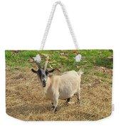 Inquisitive Goat Weekender Tote Bag