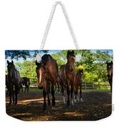 Inquisitive Horses Weekender Tote Bag